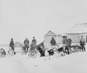 RNWMP Dog Team Patrol
